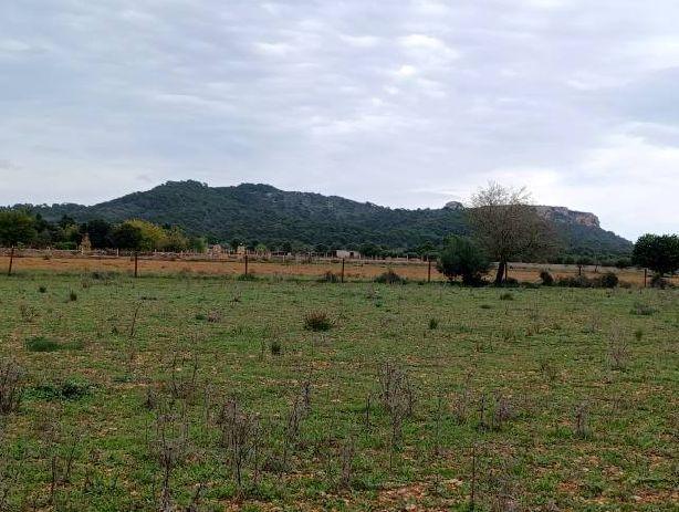 Venta de Casas en Campos